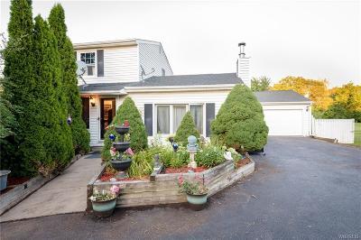Lewiston Single Family Home For Sale: 4651 Porter Center Road