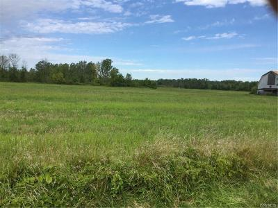 Niagara County Residential Lots & Land For Sale: 3024 Wilson Cambria Road