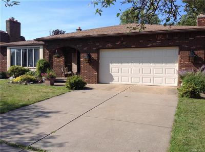 Depew Single Family Home For Sale: 118 S Prince Drive