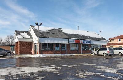 Erie County Commercial For Sale: 1960 Niagara Falls Boulevard