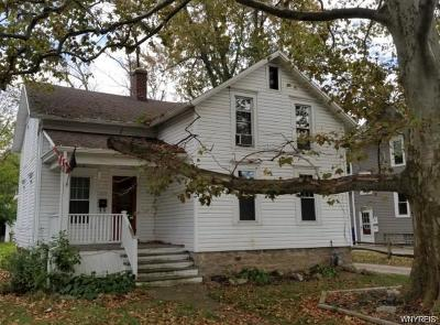 Amherst Single Family Home For Sale: 1219 Eggert Road