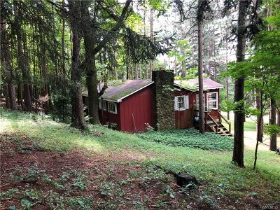Cattaraugus County Single Family Home For Sale: Burns Hill Road