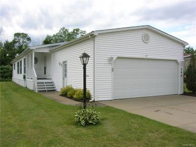 Akron Single Family Home For Sale: 266 Golden Pond