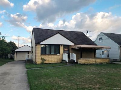 Erie County Single Family Home For Sale: 257 Ehinger Drive