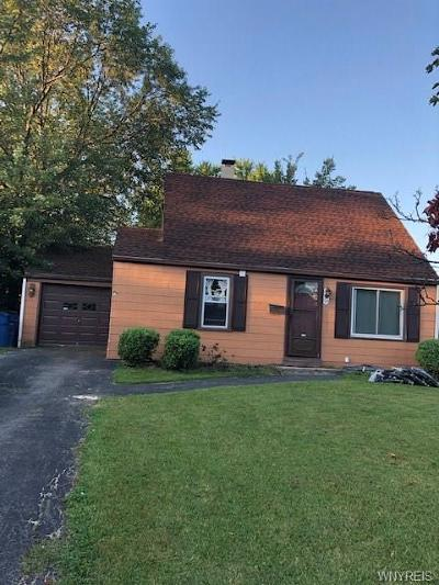Amherst Single Family Home For Sale: 93 Buckeye Road