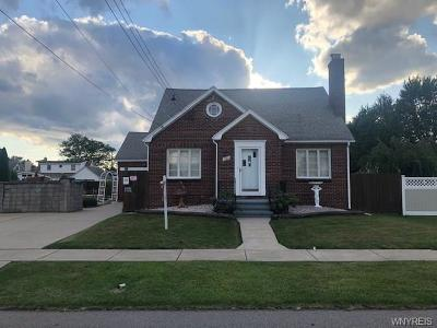 Erie County Single Family Home For Sale: 180 Cass Avenue