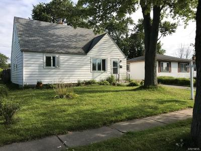 Cheektowaga Single Family Home For Sale: 24 Sandra Drive