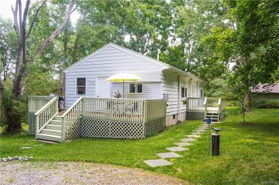 Ellicottville Single Family Home For Sale: 8143 Us Route 219