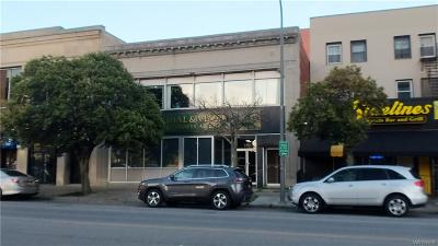 Erie County Commercial For Sale: 193 Delaware Avenue