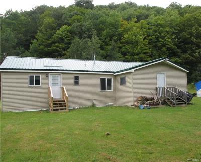 Ellicottville Single Family Home For Sale: 7707 Fancy Tract Road