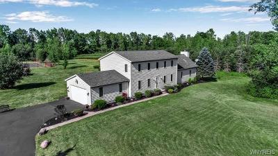 Niagara County Single Family Home For Sale: 5555 Murphy Road
