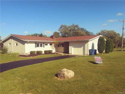 Lewiston Single Family Home For Sale: 115 Blanchard Drive #115
