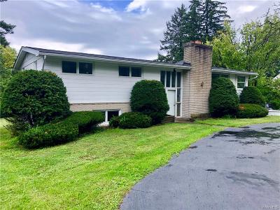 Orchard Park Single Family Home For Sale: 6390 Milestrip Road