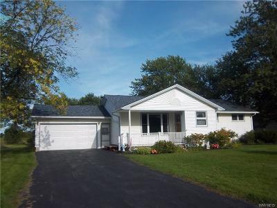 Niagara Falls Single Family Home For Sale: 6657 Ward Road