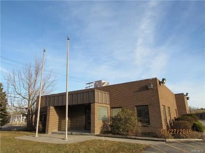 Erie County Commercial For Sale: 9825 Main Street