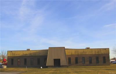 Erie County Commercial For Sale: 9829 Main Street
