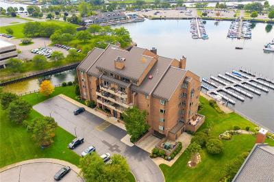Buffalo Condo/Townhouse For Sale: 40 Waterfront Circle #401