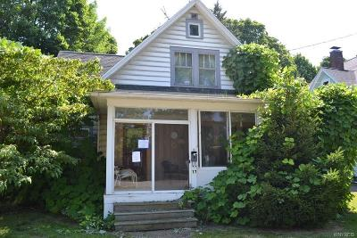 Single Family Home For Sale: 17 Babcock Avenue