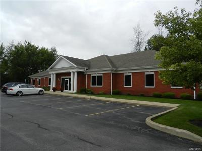 Erie County Commercial For Sale: 100 Bryant Woods