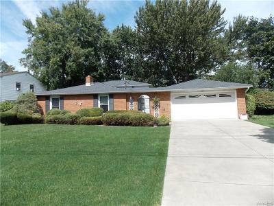 Lewiston Single Family Home For Sale: 457 Cherry Lane
