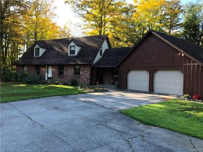 Erie County Single Family Home For Sale: 7288 Hayes Hollow Road