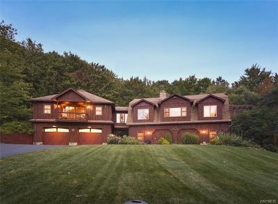 Ellicottville Single Family Home For Sale: 7160 Kent Road