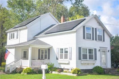 West Seneca Single Family Home For Sale: 897 Center Road