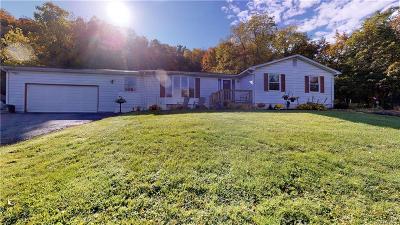 Lewiston Single Family Home For Sale: 1108 Ridge Road