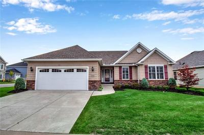Erie County Single Family Home For Sale: 5672 Waterford Lane