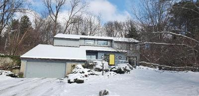 East Aurora NY Single Family Home For Sale: $425,000