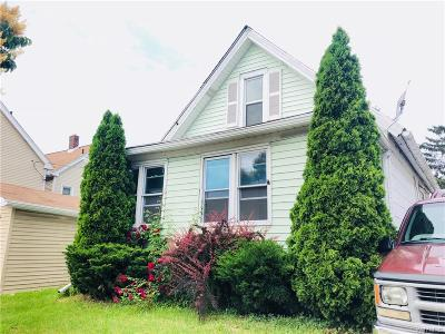 Buffalo Single Family Home For Sale: 491 Tonawanda Street