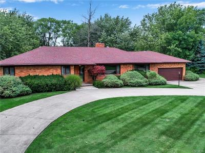 Erie County Single Family Home For Sale: 390 Lebrun Road