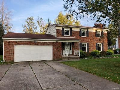 Erie County Single Family Home For Sale: 3295 Baseline Road