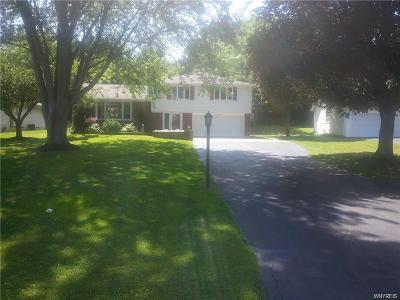 Lewiston Single Family Home For Sale: 948 Hillside Drive