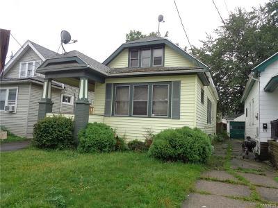 Buffalo Single Family Home For Sale: 123 Dartmouth Avenue