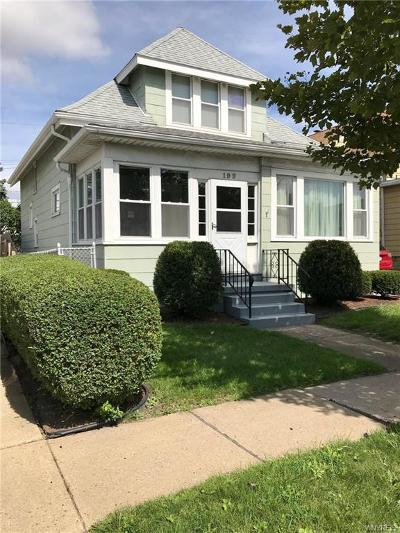 Erie County Single Family Home For Sale: 199 Wabash Ave Avenue