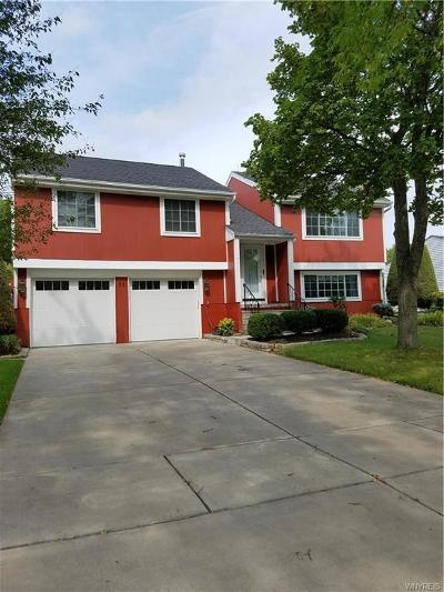 West Seneca Single Family Home For Sale: 20 Tanglewood Drive