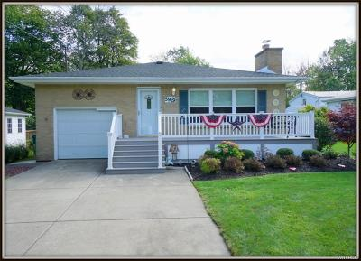 Erie County Single Family Home For Sale: 5919 Dover Road