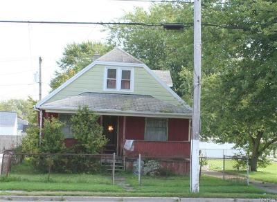 Erie County Single Family Home For Sale: 3176 S Park Avenue