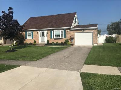 West Seneca Single Family Home For Sale: 43 Queens Drive