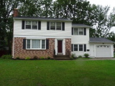 Amherst Single Family Home For Sale: 159 Willow Ridge Drive