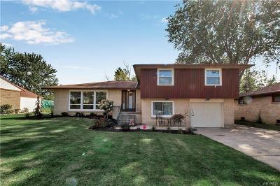 Hamburg Single Family Home For Sale: 3725 Sowles Road