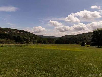 Ellicottville Residential Lots & Land A-Active: 7060 Route 242