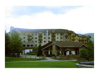 Ellicottville Condo/Townhouse A-Active: 6557 Holiday Valley Road Tamarack Club #314/316-