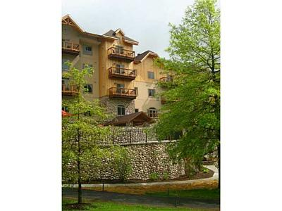 Ellicottville Condo/Townhouse A-Active: 6557 Holiday Valley Road Tamarack Club #321/323-
