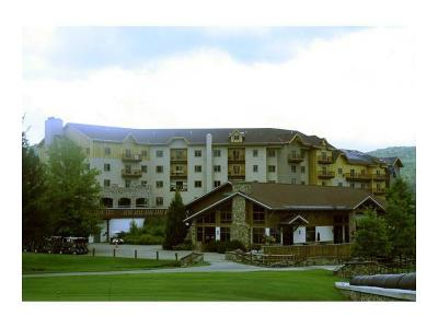 Ellicottville Condo/Townhouse A-Active: 6557 Holiday Valley Road Tamarack Club #309/311-