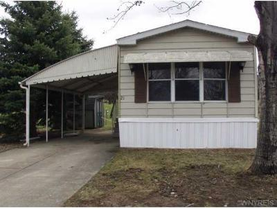 Arcade Single Family Home A-Active: 6070 Michigan Road #21