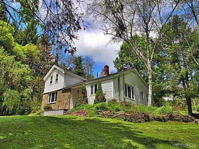 Mansfield Single Family Home A-Active: 7096 Nys Route 242