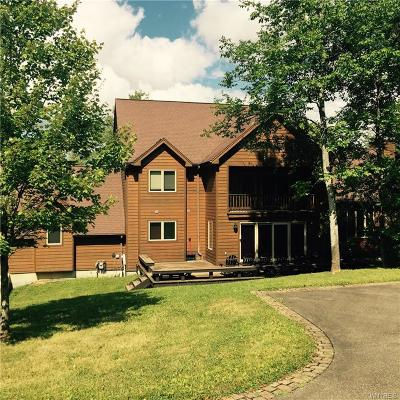 Ellicottville Single Family Home A-Active: 18 Greer Hill Drive