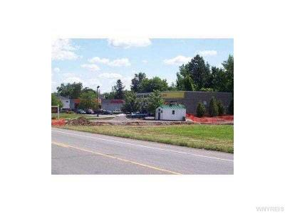 Residential Lots & Land A-Active: 11300 Maple Ridge Road